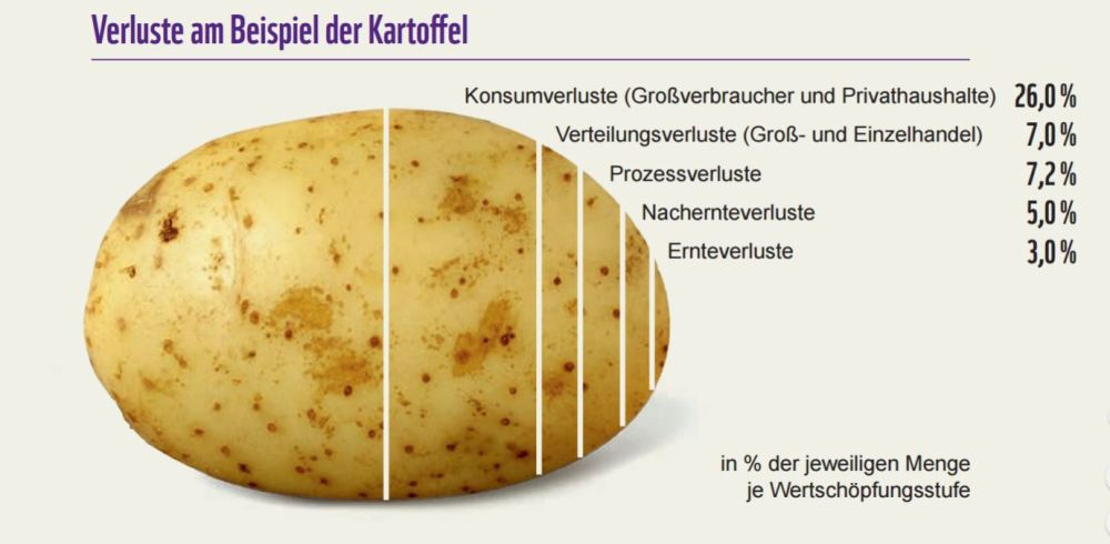 Verluste Beispiel Kartoffel.JPG